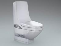 dusch wcs erleichtern die k rperpflege bei bewegungseinschr nkung haustechnikdialog. Black Bedroom Furniture Sets. Home Design Ideas