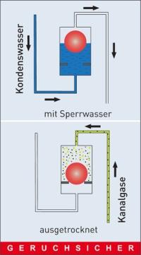 prima klima neuer kondensat siphon funktioniert mit und ohne sperrwasser haustechnikdialog. Black Bedroom Furniture Sets. Home Design Ideas